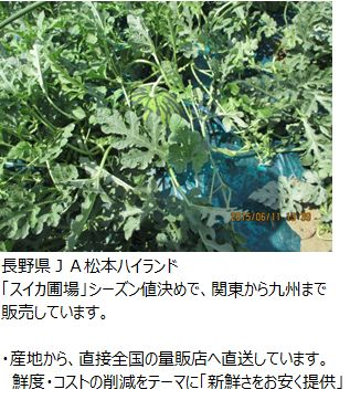 ota_matsumoto_hiland.JPG