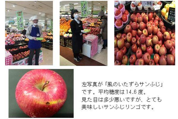 ota_apple20160119.JPG