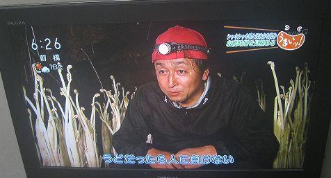 yamashita_5.JPG