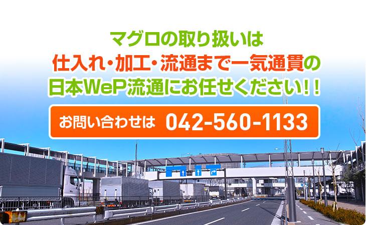 マグロの取り扱いは仕入れ・加工・流通まで一気通貫の日本WeP流通におまかせください!!お問い合わせは042-560-1133